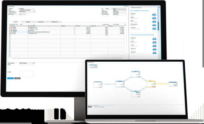 Aprenda las caracteristicas del sistema SAP business One
